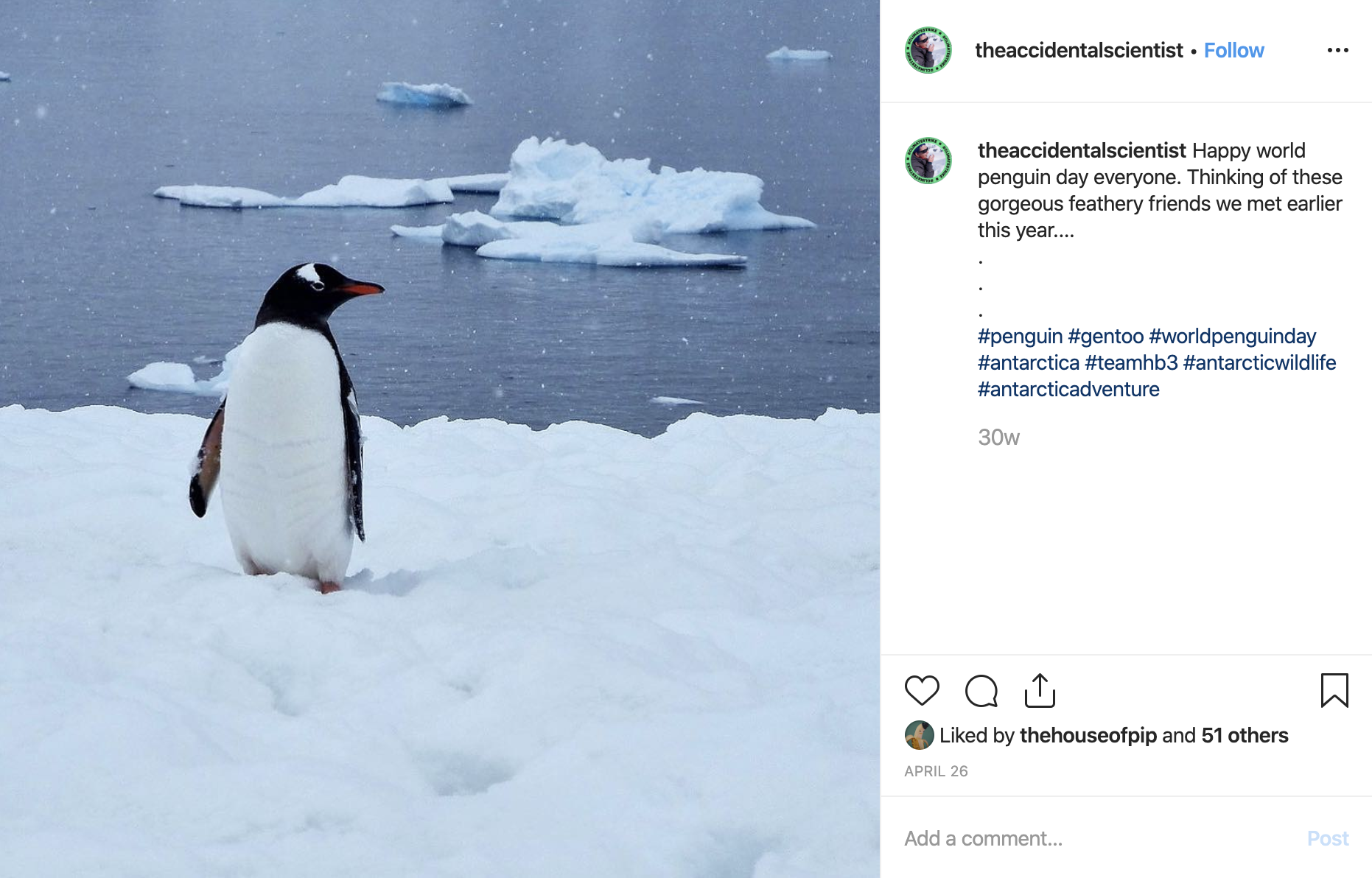 The Accidental Scientist Instagram