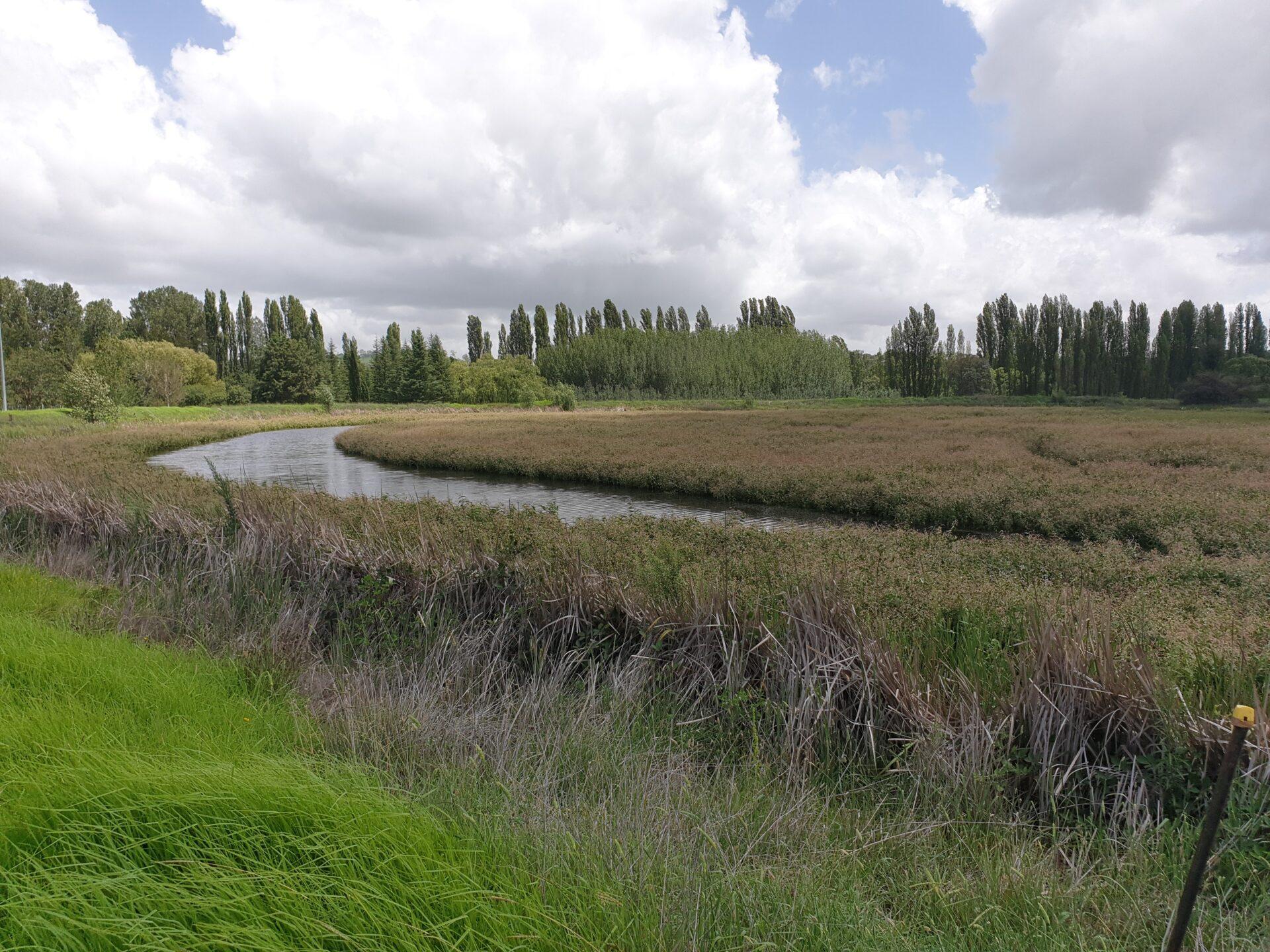 Lake Zot February 2020 After Rain