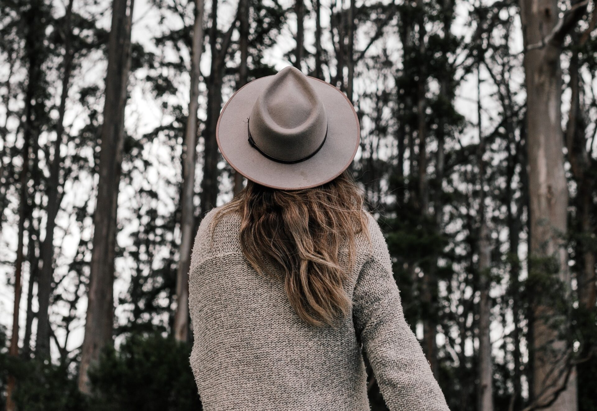 Girl with long flowing hair and a hat from the back looking and walking towards trees