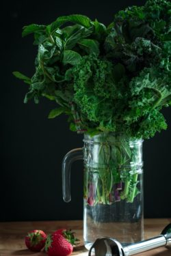 leafy greens in a water pitcher