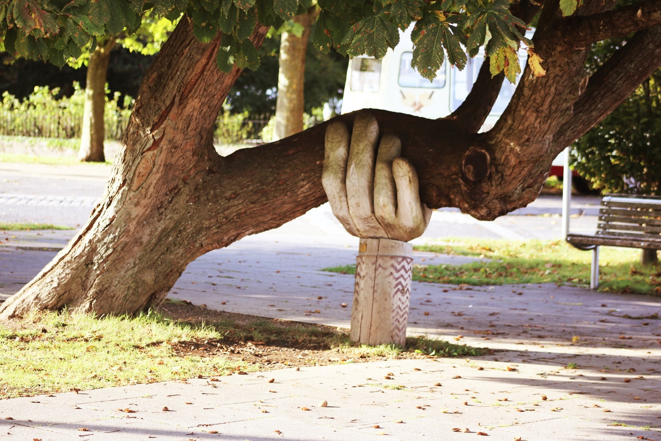 Wooden carved hand holding up a tree branch